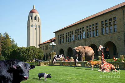Life Down On The Farm Stanford University California Dsc685 Poster by Wingsdomain Art and Photography