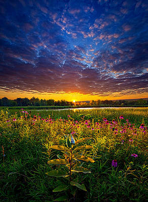 Life Is Worth Living Poster by Phil Koch