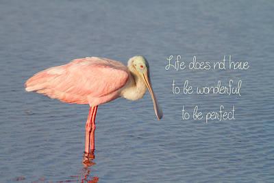 Life Wonderful And Perfect Poster by Kim Hojnacki
