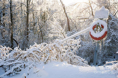 Lifesaver In Winter Snow Poster by Elena Elisseeva