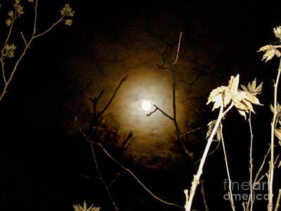 Light In The Dark Poster by Randi Shenkman