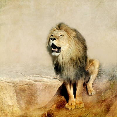 Lion Poster by Heike Hultsch