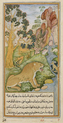 Lion Of The Plains Near Baghdad Poster by British Library