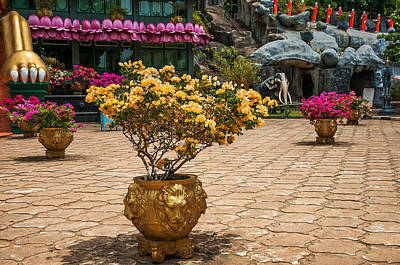 Lion Vases At Golden Temple In Dambulla Poster by Jenny Rainbow