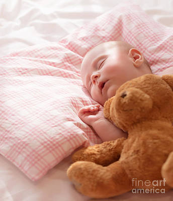 Little Baby Asleep Poster by Anna Omelchenko