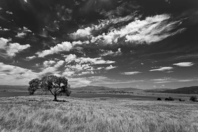 Little Prarie Big Sky - Black And White Poster by Peter Tellone