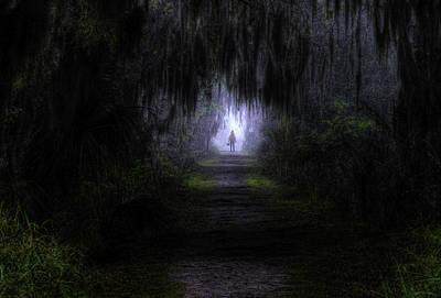 Little Red Riding Hood Dark Passage Poster by Jay Droggitis
