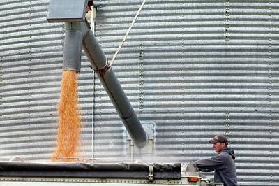Loading Grain From A Silo Poster by Jim West