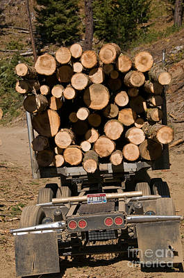 Logging Truck Poster by William H. Mullins