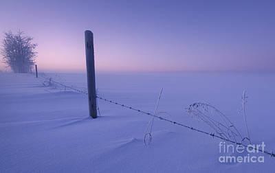 Lonesome Winter Poster by Dan Jurak