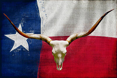Longhorn Of Texas 2 Poster by Jack Zulli