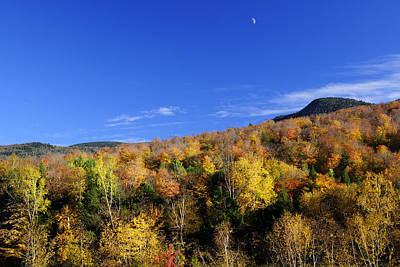 Loon Mountain Foliage Poster by Luke Moore