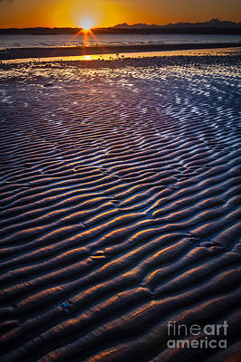 Low Tide Ripples Poster by Inge Johnsson