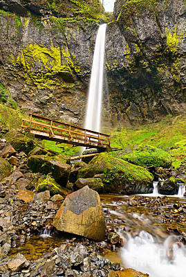 Lower Angle Of Elowah Falls In The Columbia River Gorge Of Oregon Poster by Jamie Pham