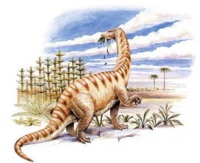 Lufengosaurus Dinosaur Poster by Deagostini/uig