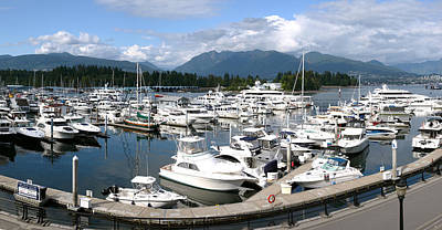 Luxury Yachts In A Marina Near Stanley Park Vancouver Bc. Poster by Gino Rigucci
