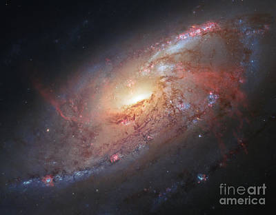 M106-spiral Galaxy Poster by Science Source