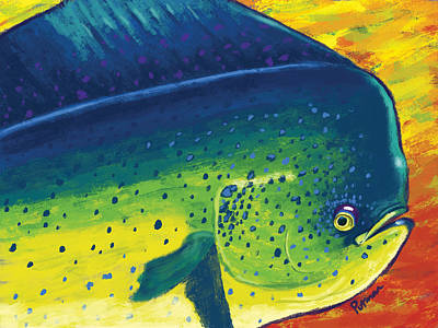Mahi Colors Poster by Kevin Putman