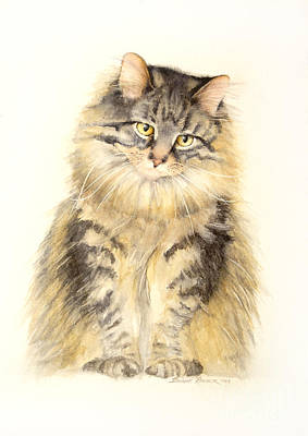 Maine Coon Cat Poster by Bonnie Rinier