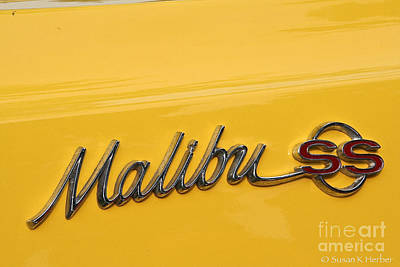 Malibu Ss Poster by Susan Herber