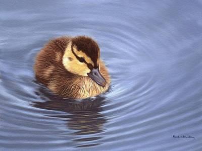 Mallard Duckling Painting Poster by Rachel Stribbling