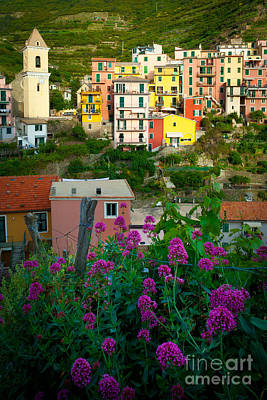 Manarola Flowers And Houses Poster by Inge Johnsson