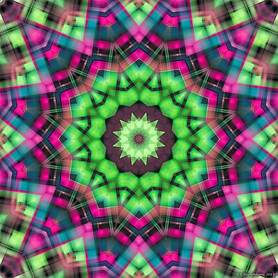 Mandala 29 Poster by Terry Reynoldson