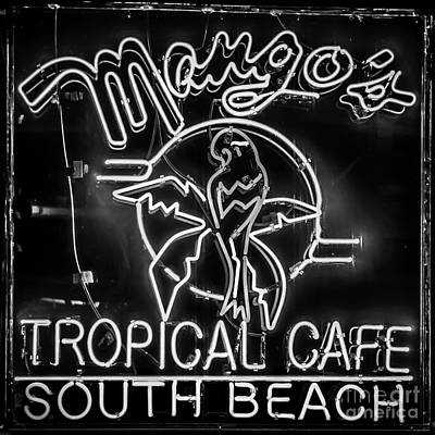 Mango's South Beach Miami - Black And White - Square Poster by Ian Monk