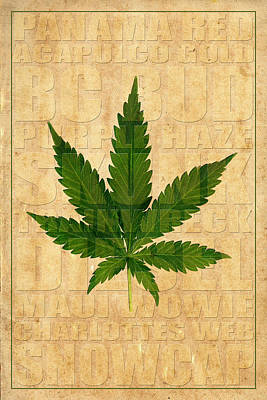 Marijuana 2 Poster by Andrew Fare