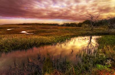Marsh At Dawn Poster by Debra and Dave Vanderlaan