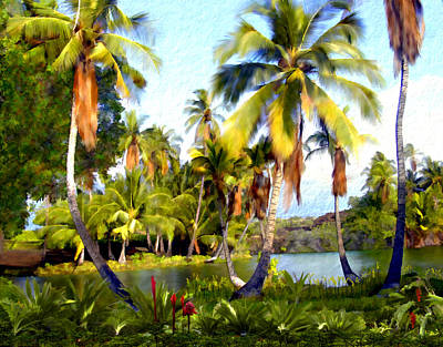 Mauna Lani Fish Ponds Poster by Kurt Van Wagner