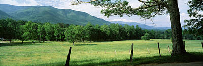 Meadow Surrounded By Barbed Wire Fence Poster by Panoramic Images