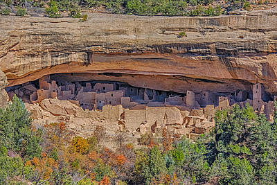 Mesa Verde Cliff Dwelling Poster by Paul Freidlund