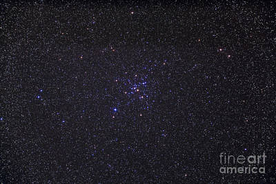 Messier 41 Below The Bright Star Poster by Alan Dyer