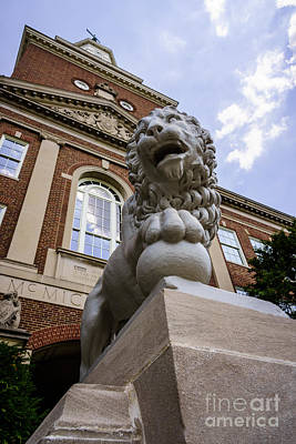 Mick Lion At Mcmicken Hall University Of Cincinnati  Poster by Paul Velgos