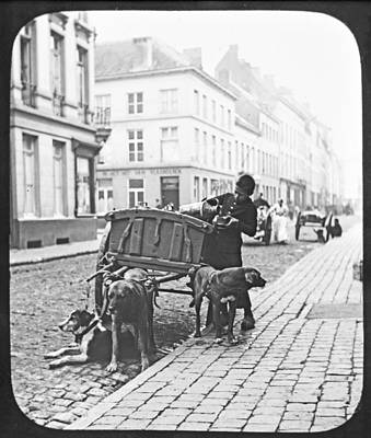 Poster featuring the photograph Milk Wagon Street Scene Germany C 1900 Vintage Photo by A Gurmankin