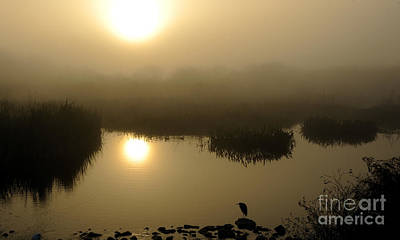 Misty Morning In The Marsh Poster by Nancy Greenland