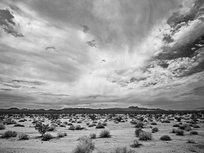 Mojave National Preserve Poster by Mike Herdering