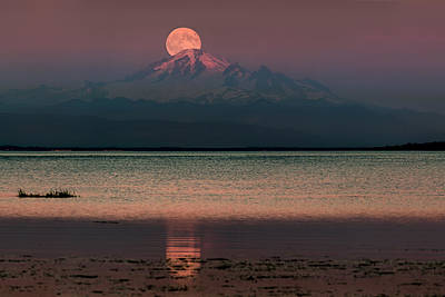 Moonrise Over Mount Baker Poster by Alexis Birkill