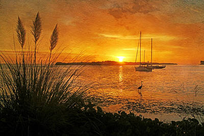 Morning Light - Florida Sunrise Poster by HH Photography of Florida