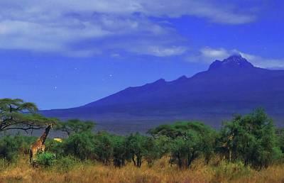Mount Kilimanjaro Poster by Babak Tafreshi