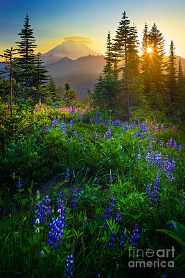 Dusk Poster featuring the photograph Mount Rainier Sunburst by Inge Johnsson