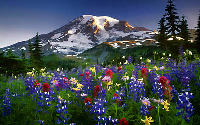 Mountain And Flowers Poster by Garland Johnson