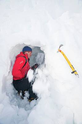 Mountaineers Building Snow Holes Poster by Ashley Cooper