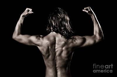 Muscles Poster by Jt PhotoDesign