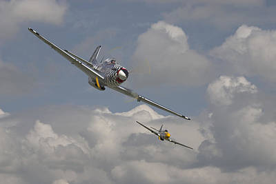 Mustang Pair Poster by Pat Speirs