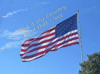My Country Us Flag Poster by Linda Phelps