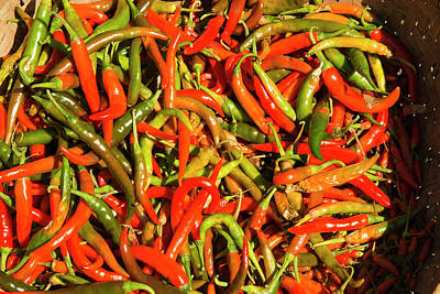 Myanmar Mt Popa Red And Green Chilies Poster by Inger Hogstrom