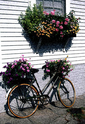 Nantucket Flower Basket - Artistic Poster by Marianne Miles