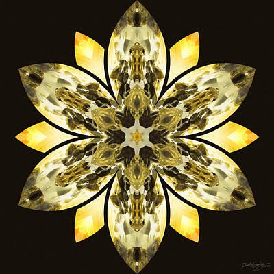 Nature's Mandala 57 Poster by Derek Gedney